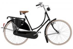 gazelle-bike2-300x203