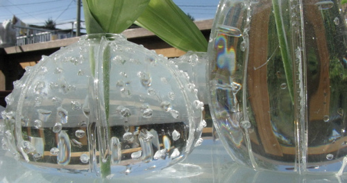 urchin-vases