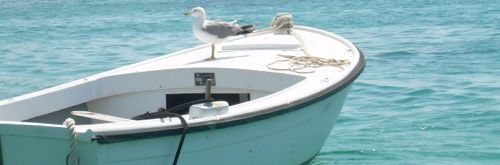 boat-bird-cropped-croatia