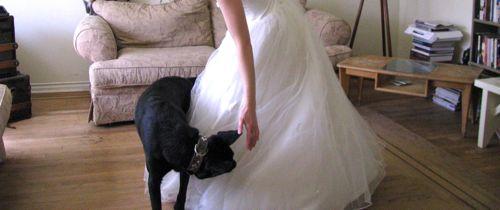 vintage-wedding-dress-leroy