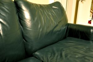 Green Leather Couch1