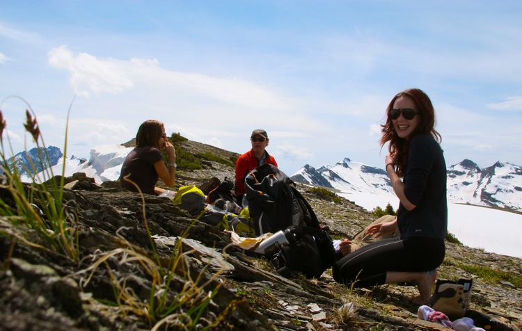 alpine-picnic